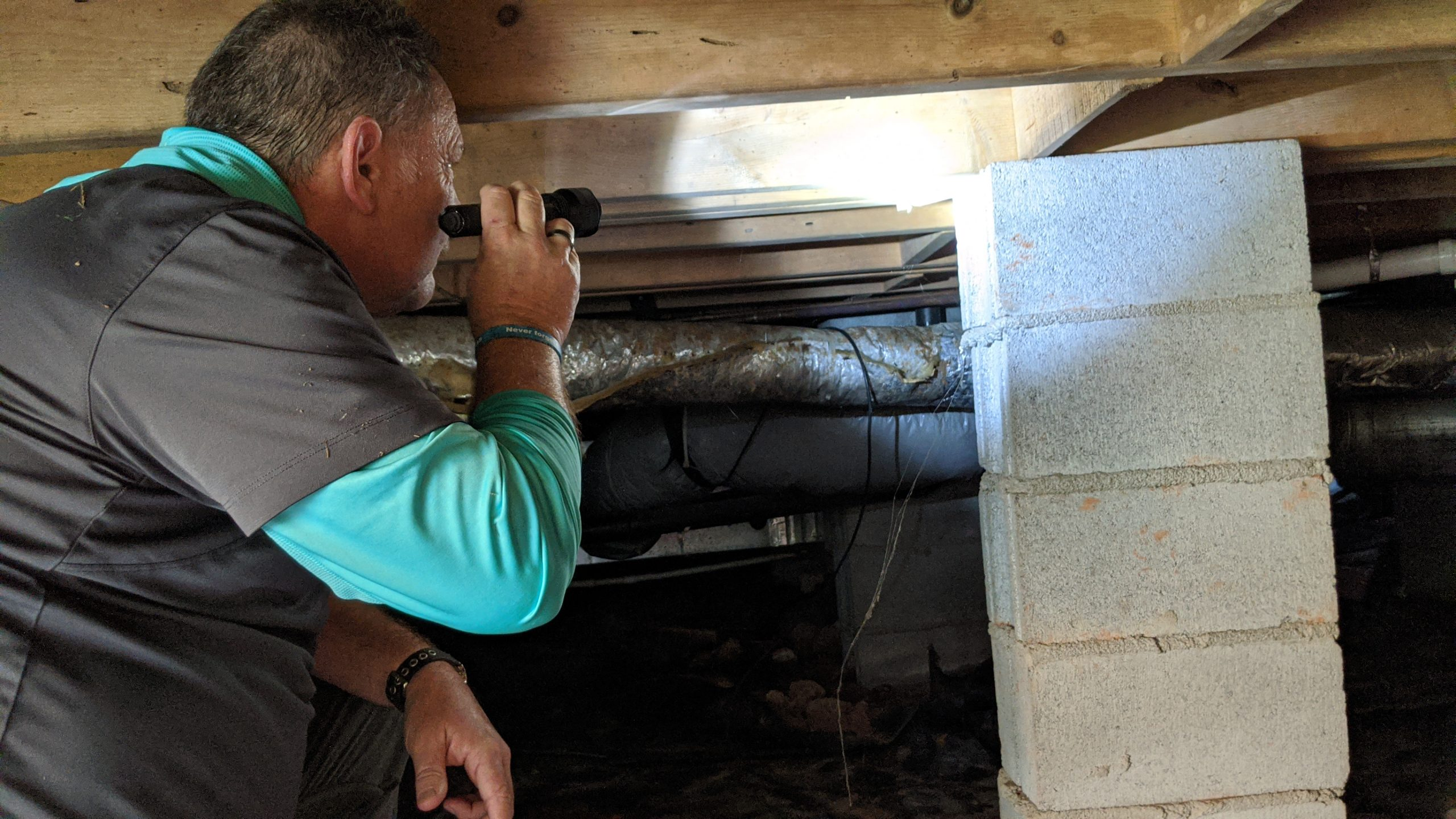Pest Control Technician looking for signs of moisture and fungus in crawlspace
