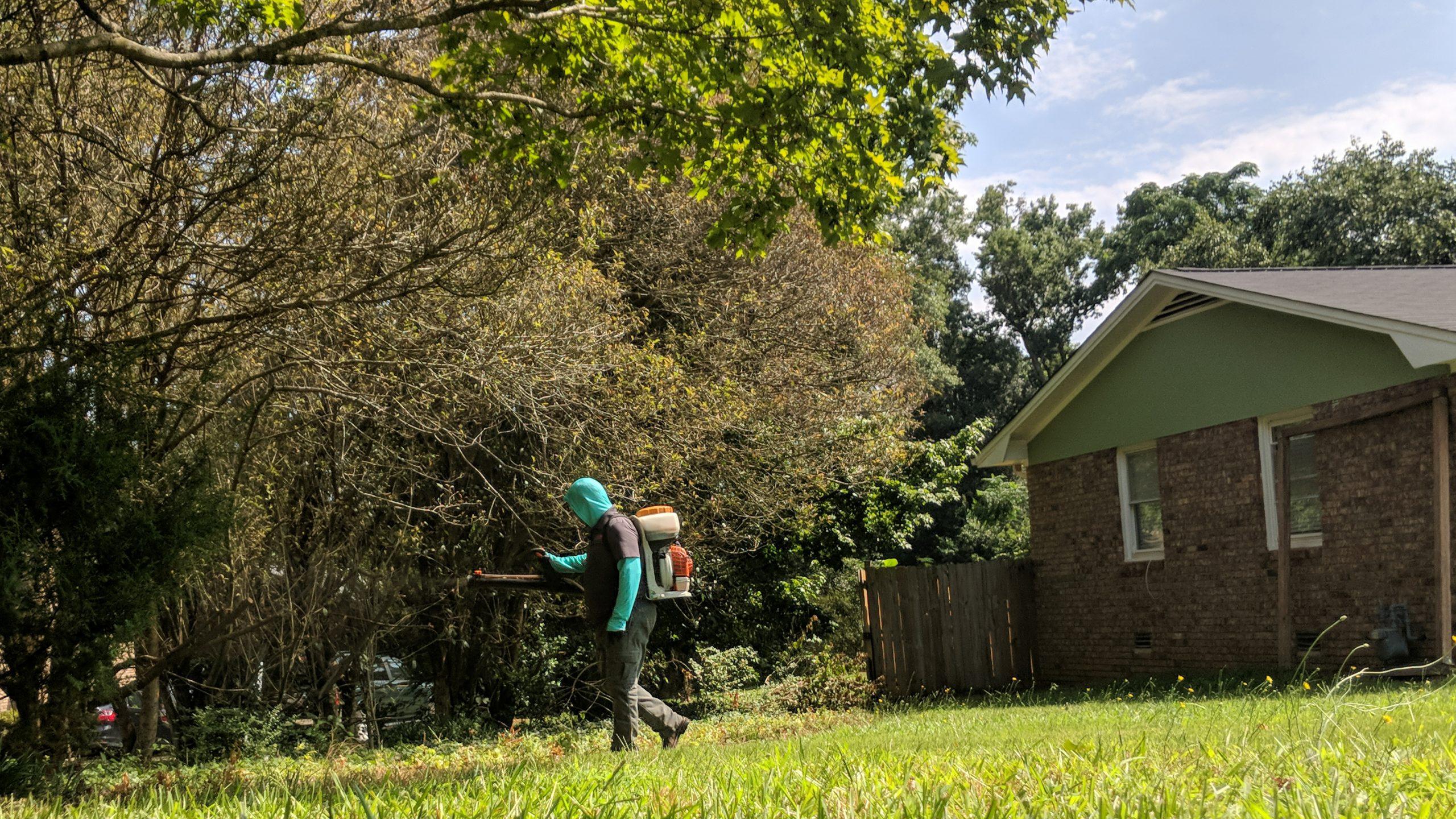 Lodestar Pest Management technician residential pest control